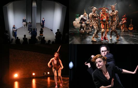 Sanatçı Asistanı (İstanbul Tiyatro Festivali)