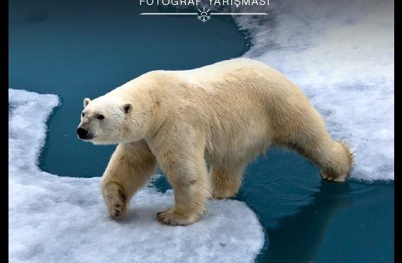 İklim değişikliğine dikkat çeken fotoğraf sergisi