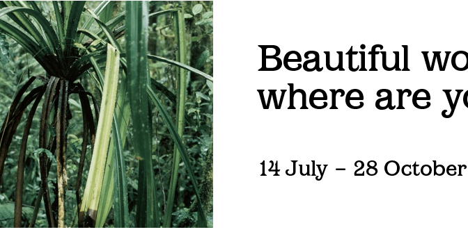Banu Cennetoğlu ve İnci Eviner, Liverpool Bienali'nde