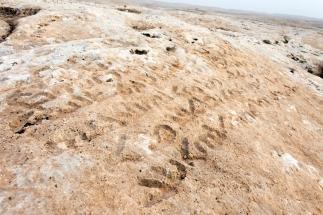 Syriac epigraphs_Sogmatar_Ancient City