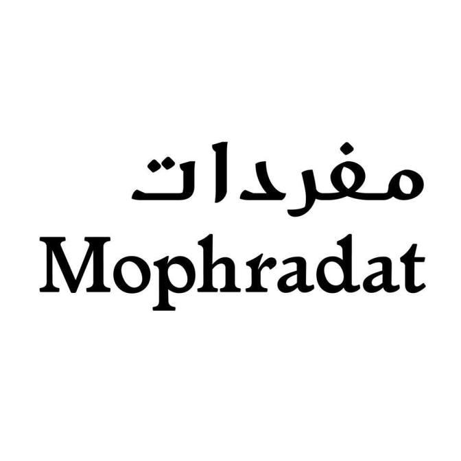 SALT işbirliği ile Mophradat's Art Fellows programından açık çağrı