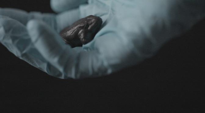 """Pera Müzesi'nde yeni bir video yerleştirme: """"Tüm Zamanlara, Tüm Üzgün Taşlara"""""""